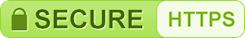 SSL HTTPS icon image